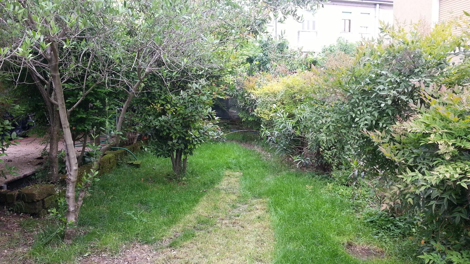 Il giardino una casa da ristrutturare for Ristrutturare il giardino
